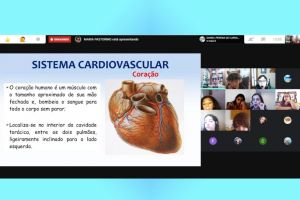 5ano-cardiovascular-urinario1008.jpg